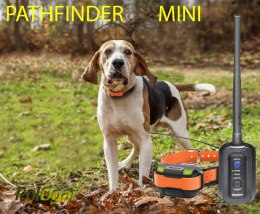 Dogtra Pathfinder mini GPS dla psa zasięg do 5 km